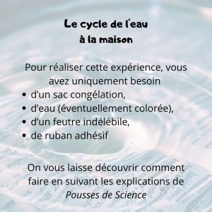 Sciences 2